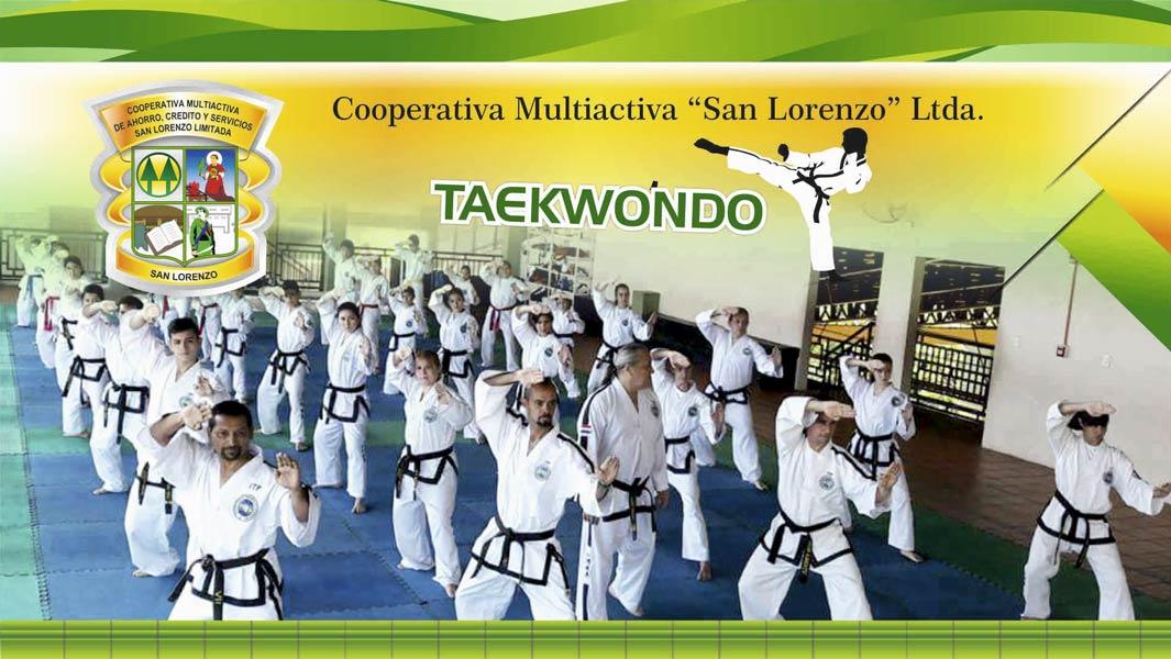 slider-7-taekwondo